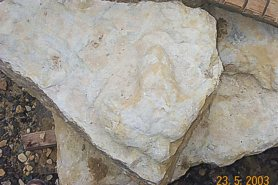 """Cast from Dinosaur Footprint"" - Click for a bigger picture!"