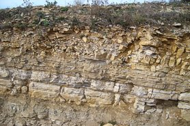 """The top of the quarry face, showing the overburden"" - Click for a bigger picture!"